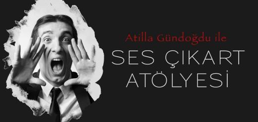 atilla_gundugdu_wordpress