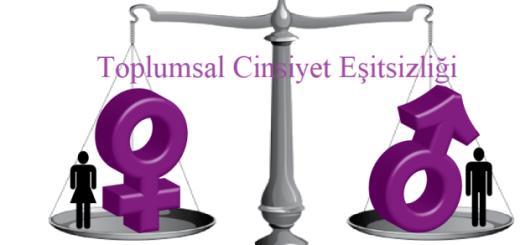 toplumsal_cinsiyet